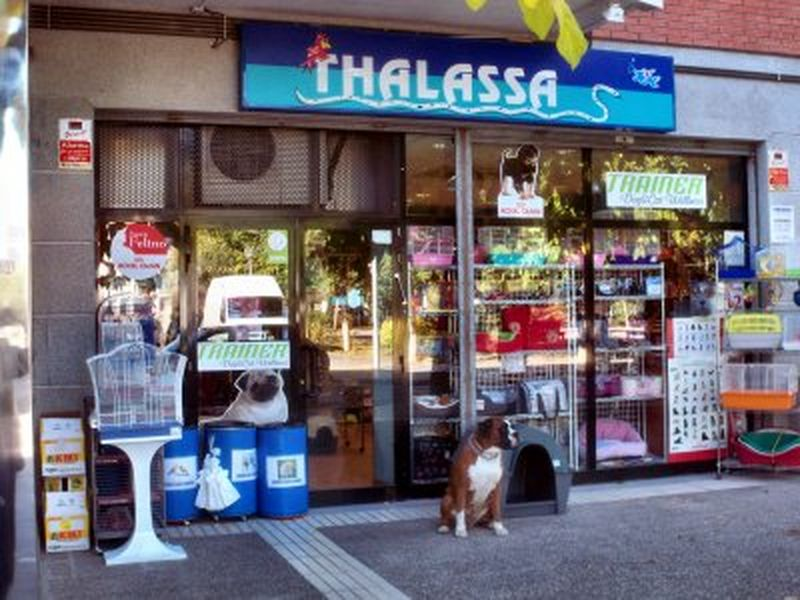 Mascotas Thalassa